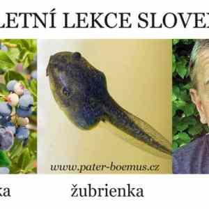 Obrázek '09-03-Lekce-slovenstiny'