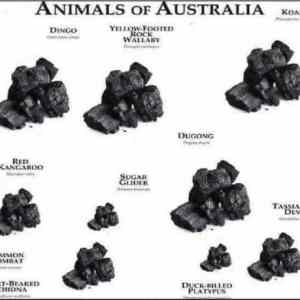 Obrázek 'AnimalsofAustralia'