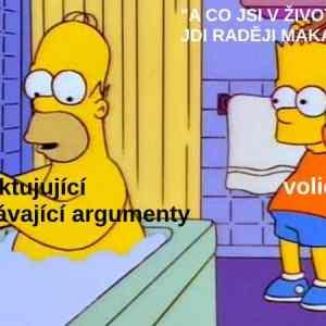 Obrázek 'ArgumentacevolicuANO'