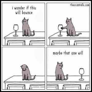 Obrázek 'Cats-are-assholes65'