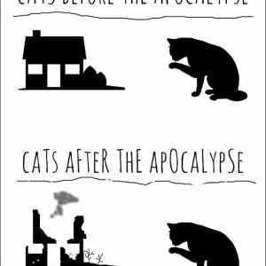 Obrázek 'Cats Before and After Apocalypse'