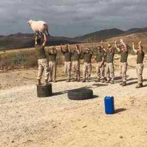 Obrázek 'CesivAfganistanedostalidarekzeZlovencka'