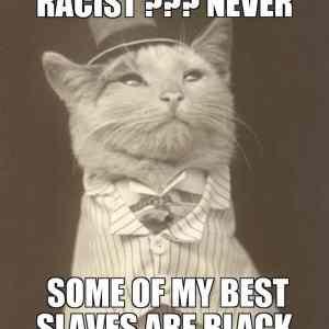 Obrázek 'Classycatstrikeagain'