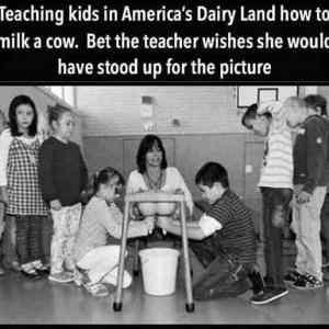 Obrázek 'DairyLandLesson'