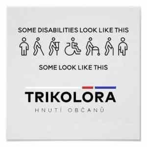 Obrázek 'Disabilities'