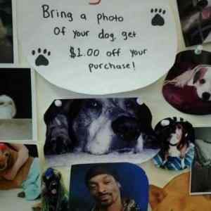 Obrázek 'DogWAll'