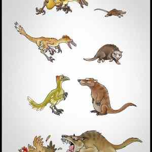 Obrázek 'Evolution-Payback'