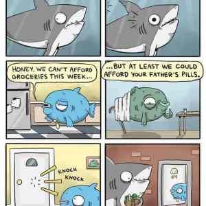 Obrázek 'Fish-are-friends-not-food'