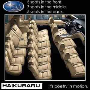 Obrázek 'Haikubaru'