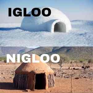 Obrázek 'Igloonigloo'
