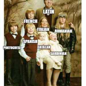 Obrázek 'Jazykovevetve'