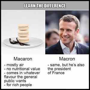 Obrázek 'Learn The Difference - Macaron vs. Macron'