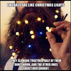 Obrázek 'Liberals Are Like Christmas Lights'
