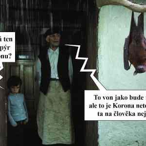 Obrázek 'Netopyrikorona'