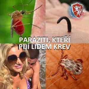 Obrázek 'Parazitisajicikrev'