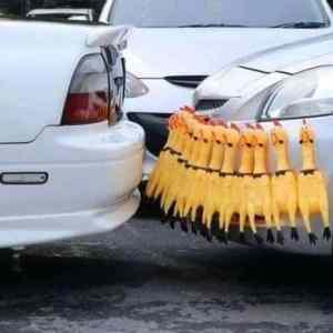 Obrázek 'Parkovacisystem'