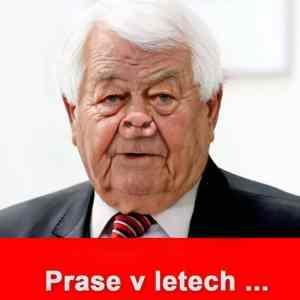 Obrázek 'PrasevLetech'