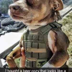 Obrázek 'Rambo-Doggo'