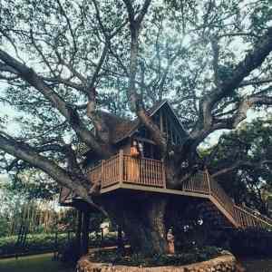 Obrázek 'ReallyAwesomeTREEHouse'