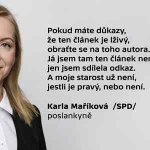 Obrázek 'SPDinnutshell'