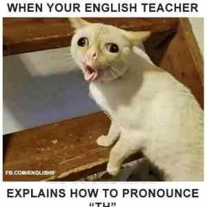 Obrázek 'TeacherL'