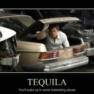 Obrázek 'Tequila4118'