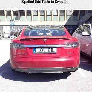 Obrázek 'TeslainSweden'