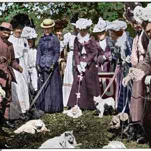 Obrázek 'The annual cat show at the Royal Botanic Gardens 1900'