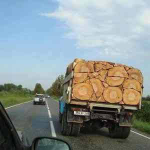 Obrázek 'This-load-of-lumber'