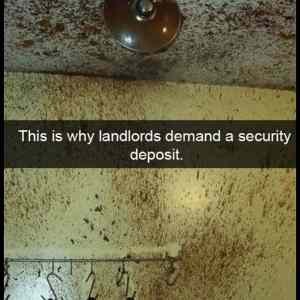 Obrázek 'Why Landlords Want A Security Deposit'