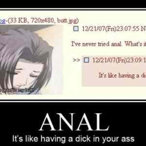 Obrázek 'anal'