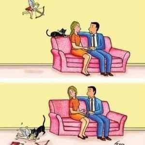 Obrázek 'andthatswhatcatsdo'