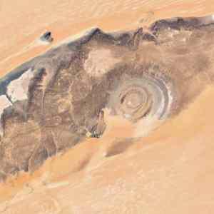 Obrázek 'boziokovAmazonii'