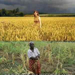 Obrázek 'farmininrhodesiazimbabwe'