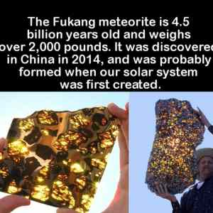 Obrázek 'fukang'