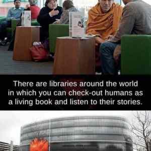 Obrázek 'knihovna'