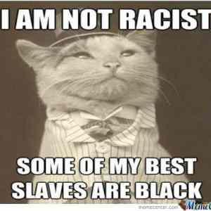 Obrázek 'not-racist'