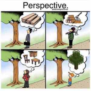 Obrázek 'perspektivastromu'