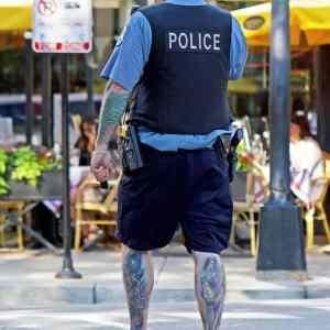Obrázek 'police'