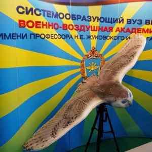Obrázek 'ruskapruzkumnasova-jeivprovedeniorel'