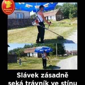 Obrázek 'slavek'
