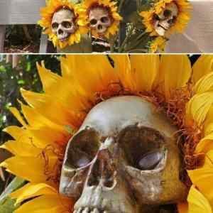 Obrázek 'smrtnecnice'