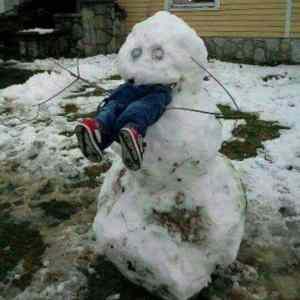 Obrázek 'snehuhamak'