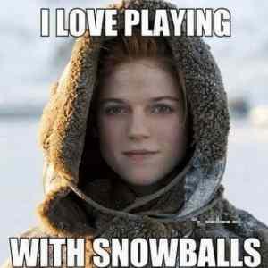 Obrázek 'snowballs'