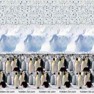 Obrázek 'stereogram-tucnacinekonecno'