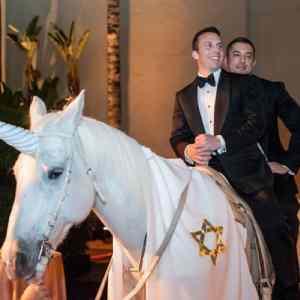 Obrázek 'svadbavitekohovitekde'