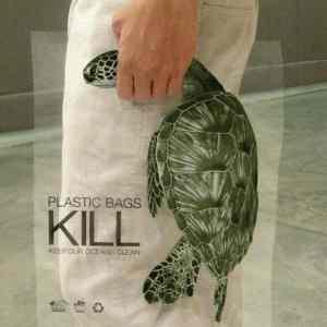 Obrázek 'turtletote'