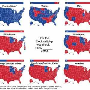 Obrázek 'volby-v-usa-jsou-o-rase'