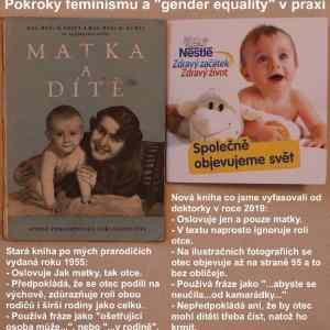 Obrázek 'ztohofeminismumamuplnerovnepohlavi'