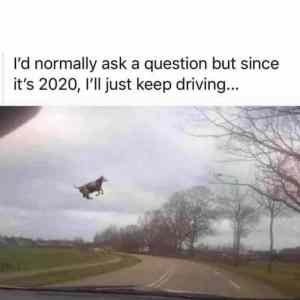 2020 just driving